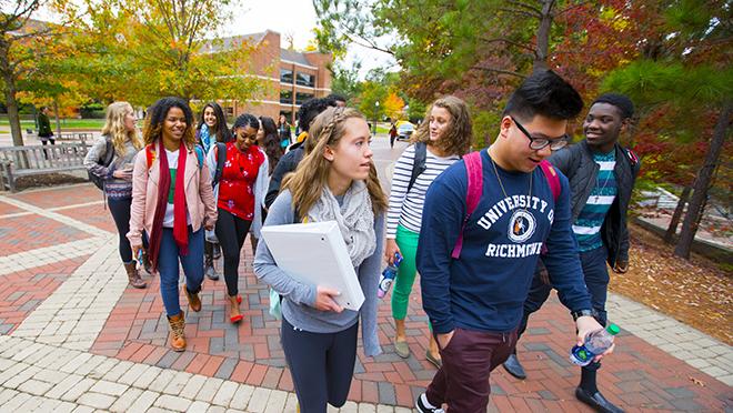 Undergraduate Student Profile
