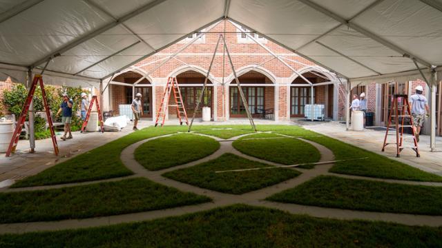 Tents to rent around campus