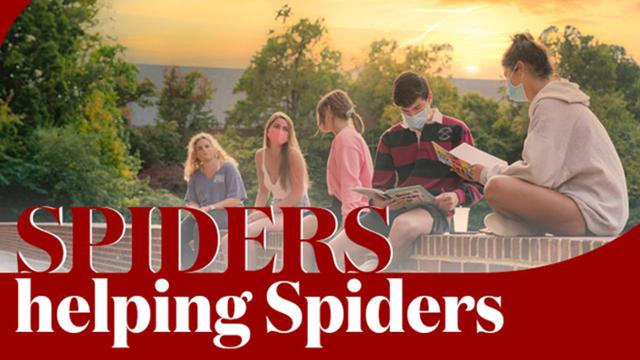 Spiders Helping Spiders 2020