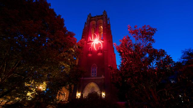 Spider projected onto Boatwright Memorial Library