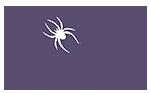 Spider pennant