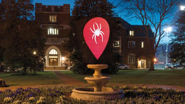 Projected spider graphic at Westhampton Green fountain