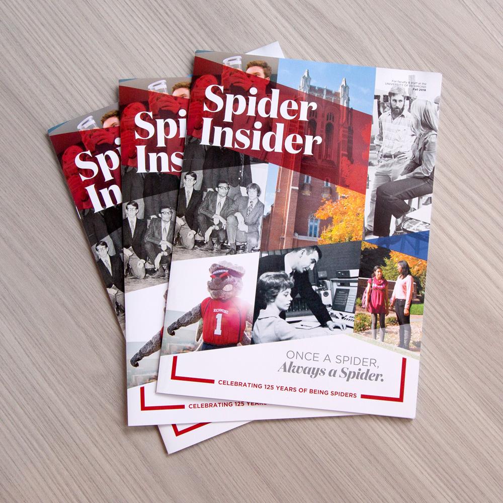 Spider Insider Cover