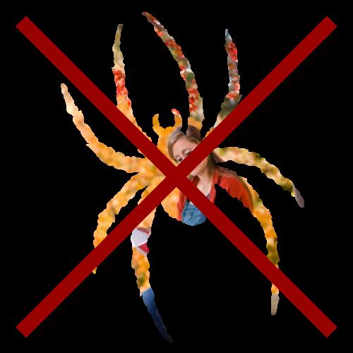 spirit logo with embeded image