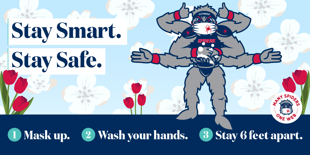 Graphic of Webstur mascot that reads Stay Smart, Stay Safe.