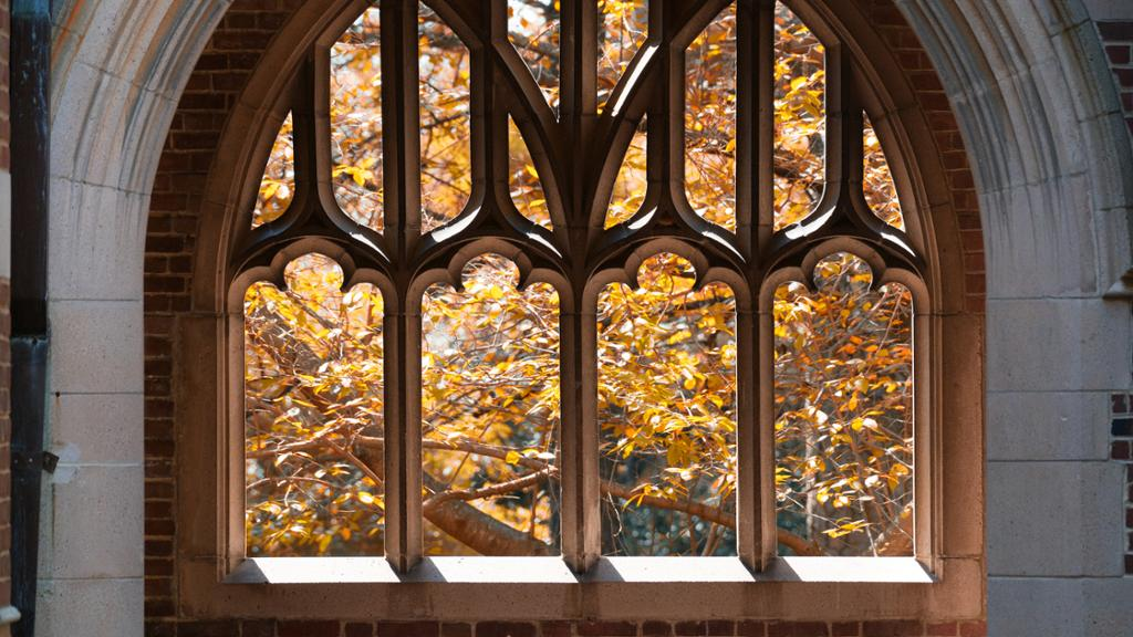 A view of fall foliage through the windows on Ryland Hall.