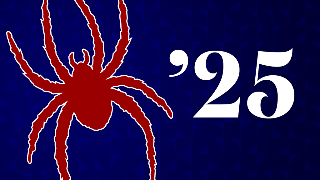 Class of 2024 Zoom Background: Spider on Blue Background