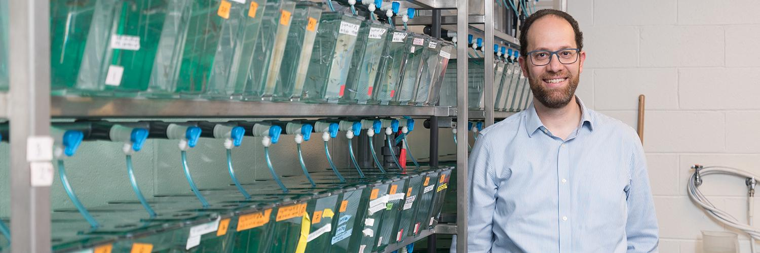 Biology professor awarded NSF grant for zebrafish research