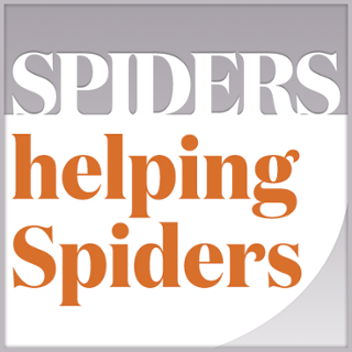 Spiders Helping Spiders 2019