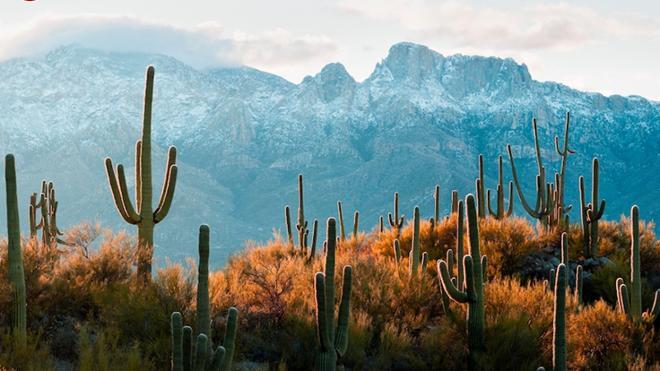 Pilgrimage: Arizona