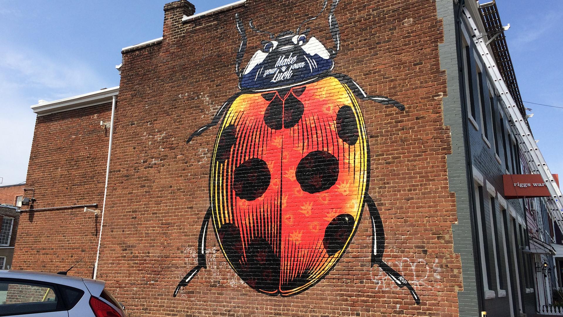 Street Art Ladybug