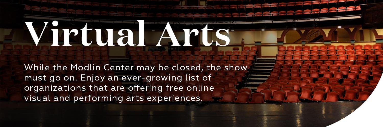 Virtual Arts