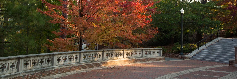 Fall Degree Program Classes at SPCS