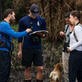 Three people doing field work in a forest